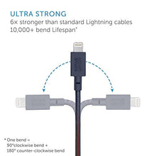 Load image into Gallery viewer, Native Union 1,2m Sage Belt Cable USB til Lightning