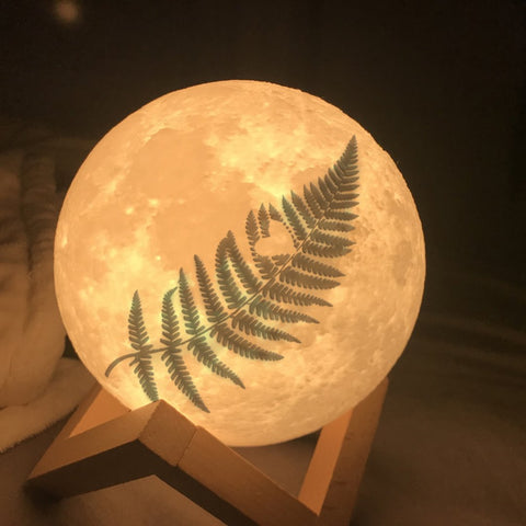 Heart Silver Fern Moon Lamp - Special Product - 1st New Zealand