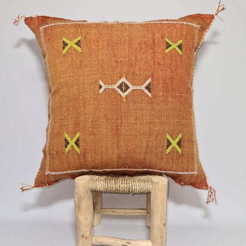 orange sabra Cactus Pillow cover