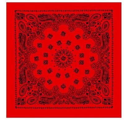 Red W/ Black Trainmen Bandana