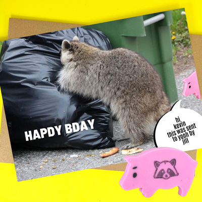 happy birthday trash panda