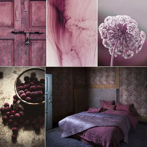 Inspiration couleurs gourmandes : ash rose & prune