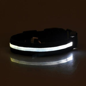 Safety Pet Collar For Lighted Up Nylon Solid LED