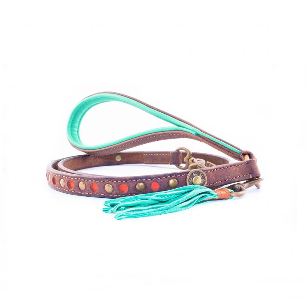 Bobby Dog leash