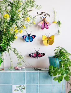 Peacock Butterfly Wall Decoration