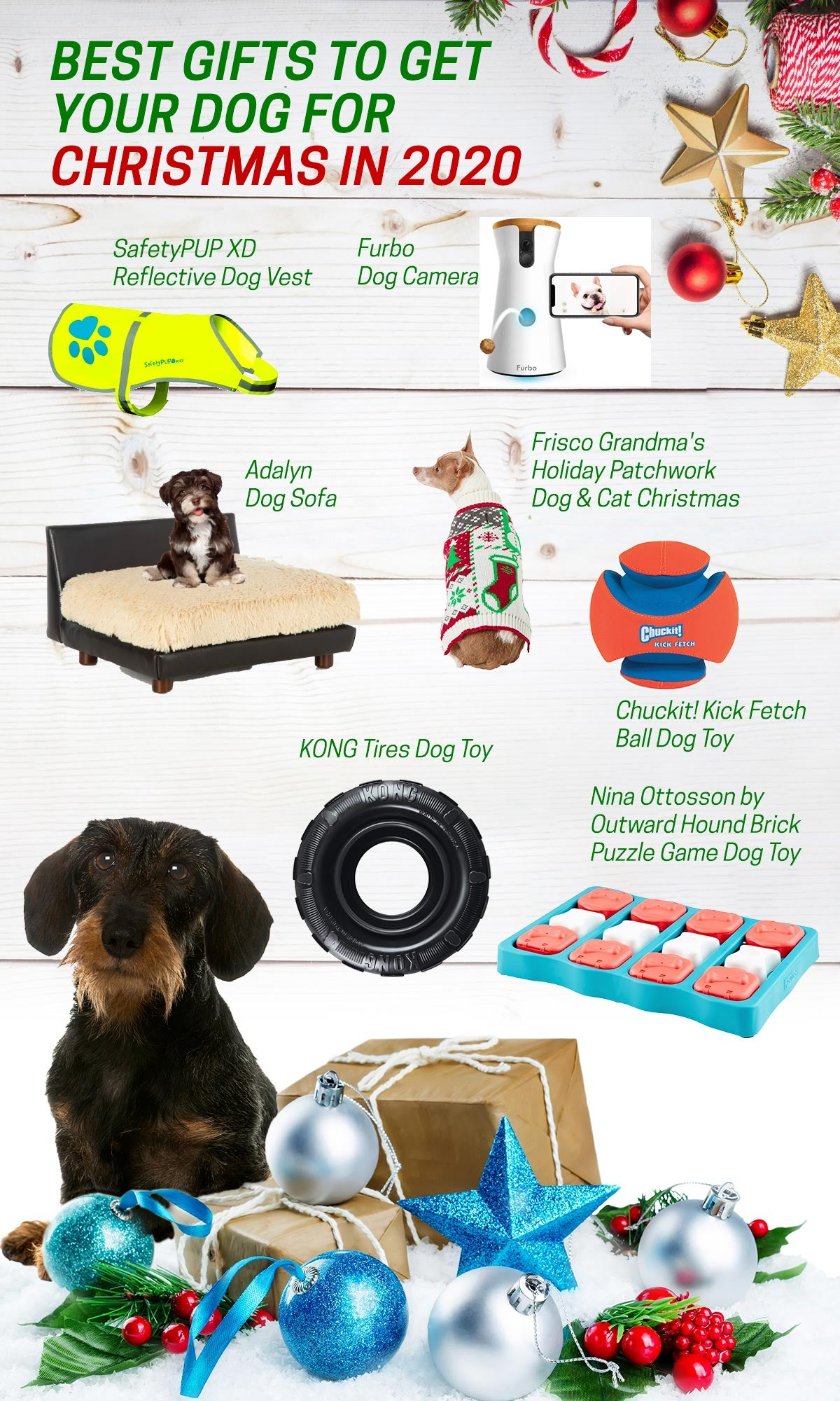 The 15 Best Christmas Gifts for your Dog in 2020 Infographic