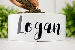 Loges and Lily Personalized Ceramic Dog Bowl
