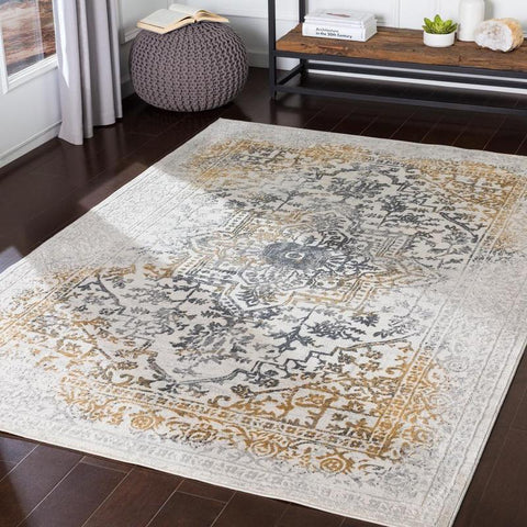 Casey Updated Traditional Charcoal Area Rug