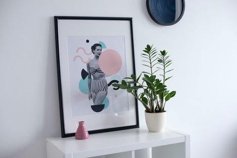 framed mixed media art and potted plant
