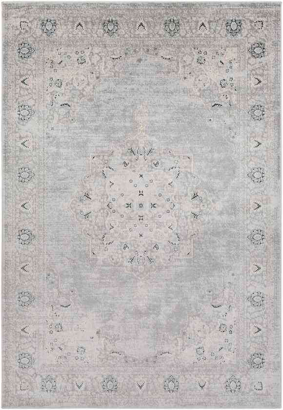 Mayenne Updated Traditional Light Gray Area Rug