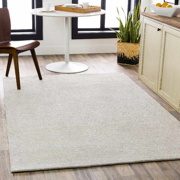Montrell Modern Light Gray Area Rug