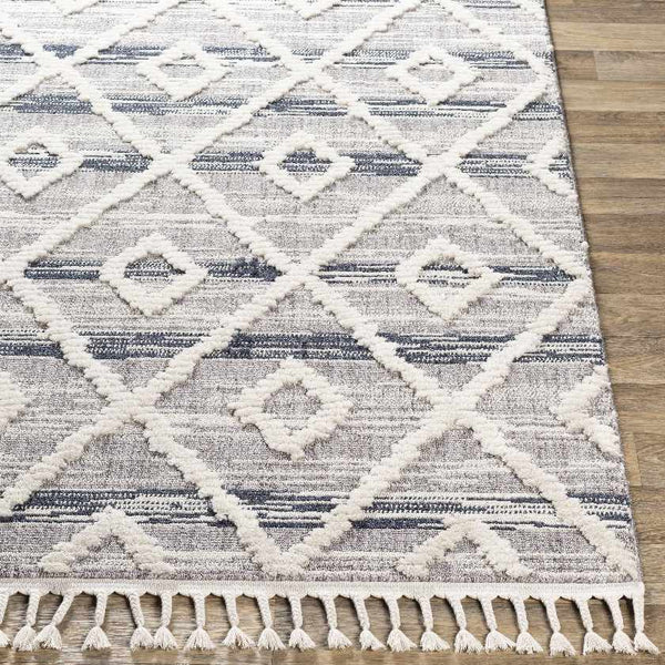 Oyonnax Global Navy Area Rug