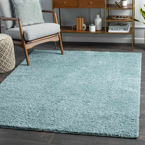 Tuindorp Shag Teal Area Rug