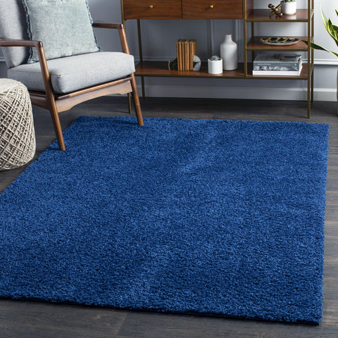 Tuindorp Shag Navy Area Rug