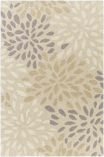 Evry Transitional Beige Area Rug