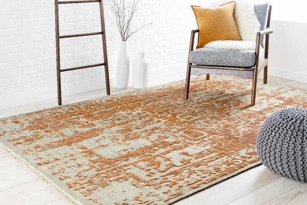 Narcisse Updated Traditional Khaki Area Rug
