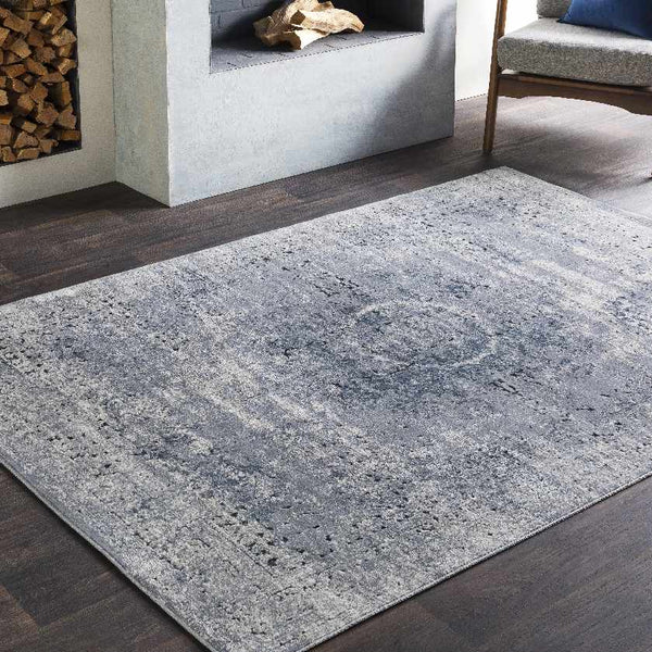 Somme Updated Traditional Medium Gray Area Rug