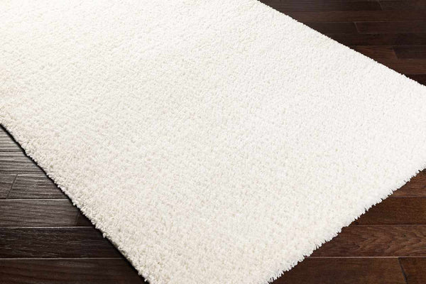 Vere Solid and Border White Area Rug