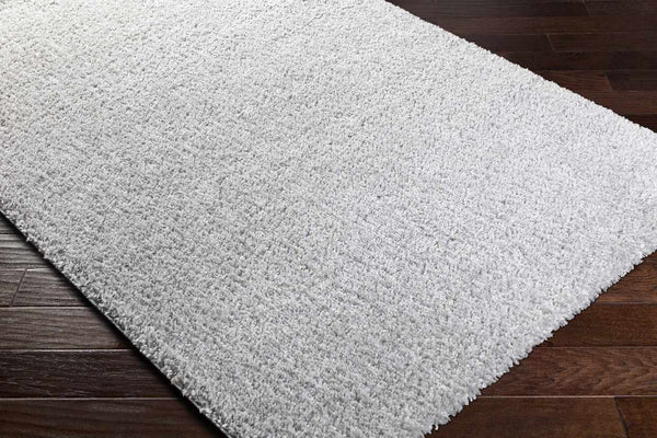 Vere Solid and Border Light Gray Area Rug
