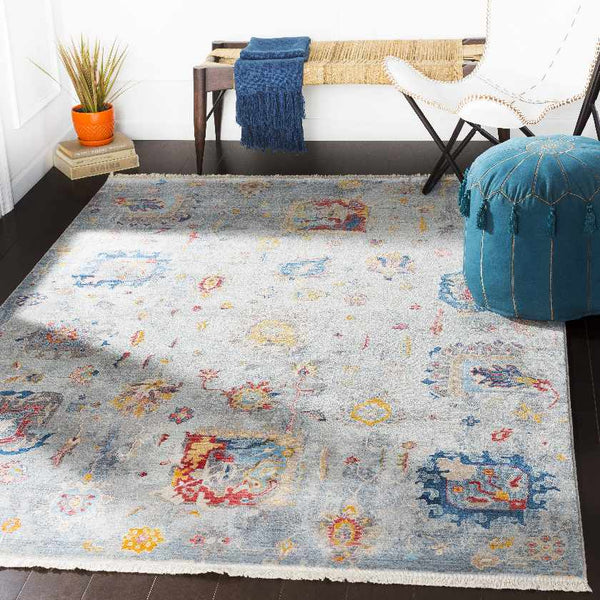 Hayum Updated Traditional Medium Gray Area Rug