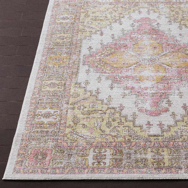 Plaisir Traditional Coral Area Rug