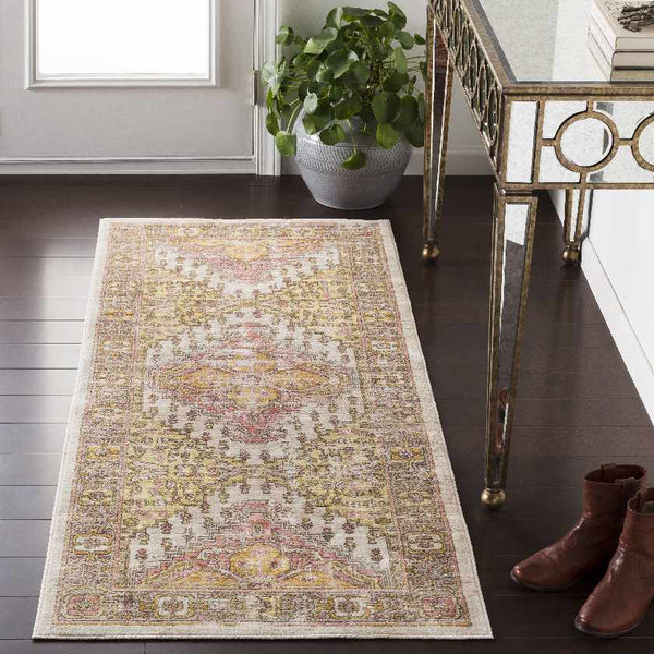 Plaisir Updated Traditional Coral Area Rug