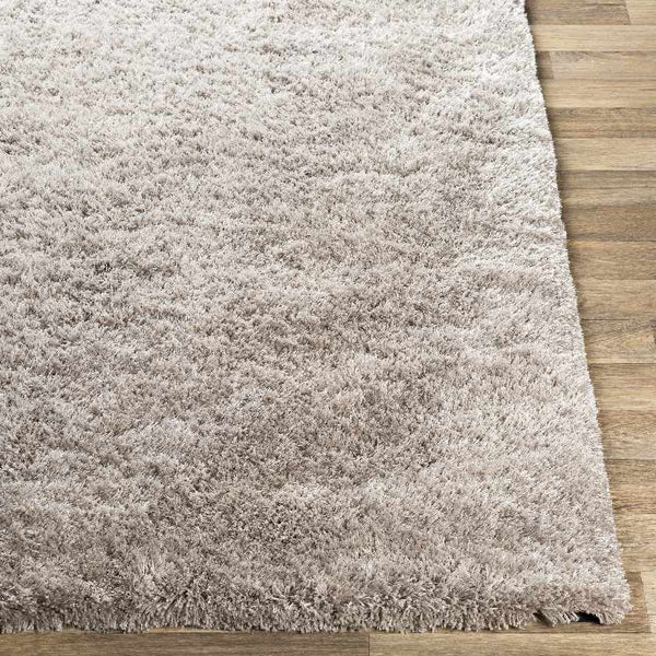 Cambrai Modern Light Gray Area Rug