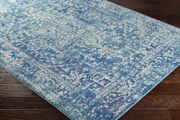 Amelia Updated Traditional Teal Area Rug
