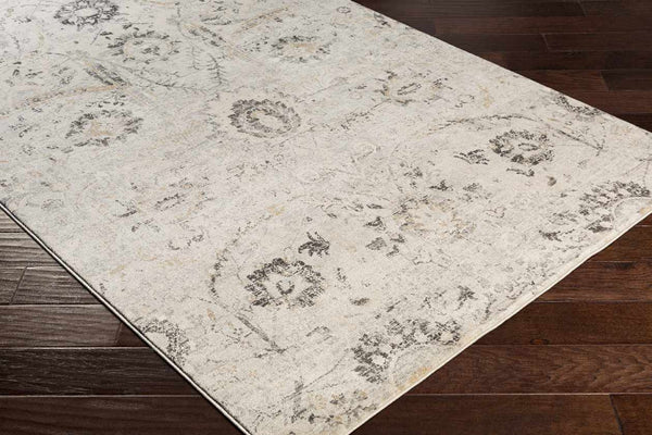 Avellino Updated Traditional Charcoal Area Rug