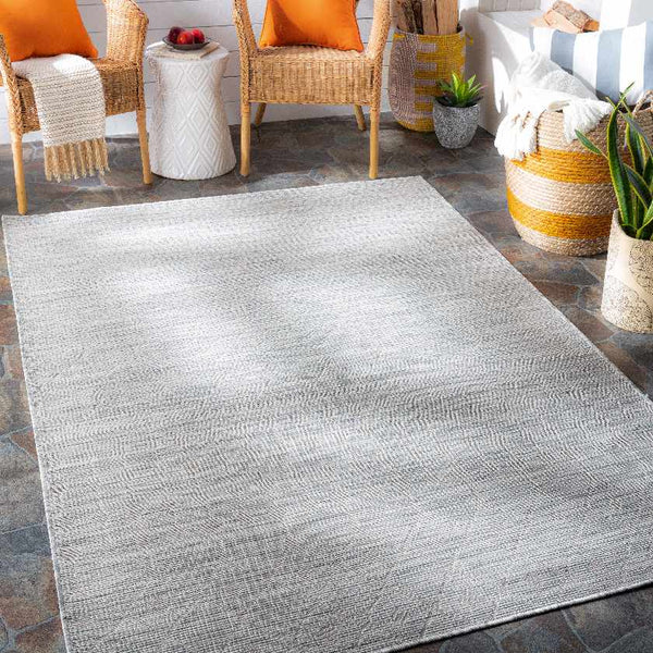 Cruquius Modern Light Gray Area Rug