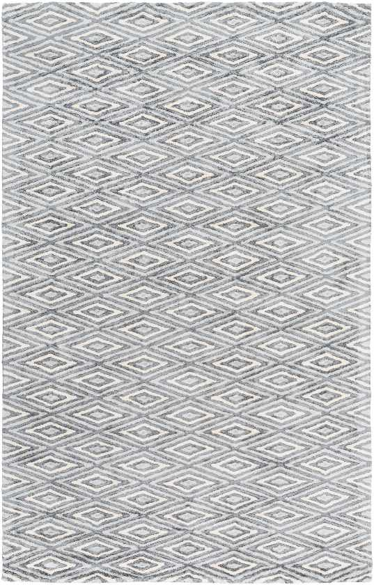 Merignac Modern Light Gray Area Rug