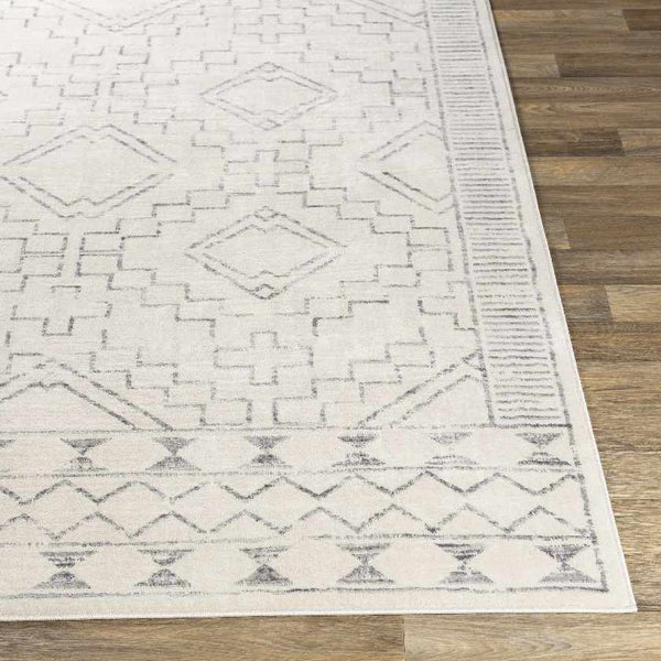 Rheeveld Global Grey Area Rug