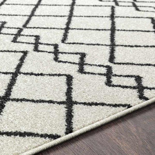 Lois Bohemian/Global Black Area Rug