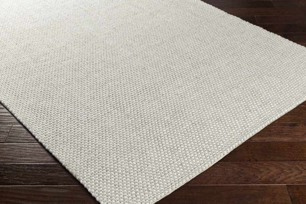 Orville Modern Light Gray Area Rug