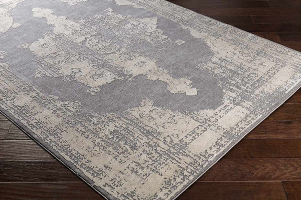 Pacquet Updated Traditional Medium Gray Area Rug