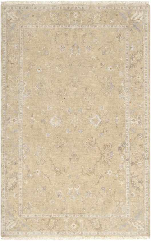 Campania Traditional Beige Area Rug