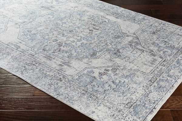 Trieste Updated Traditional Sky Blue Area Rug
