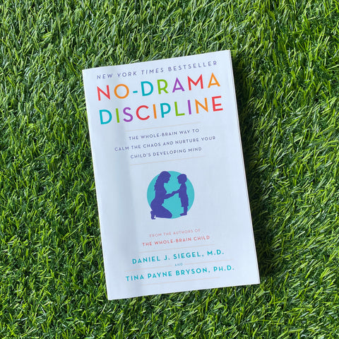 NO DRAMA DISCIPLINE: THE WHOLE-BRAIN WAY TO CALM THE CHAOS AND NURTURE YOUR CHILD'S DEVELOPING MIND