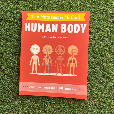 THE MONTESSORI METHOD: HUMAN BODY