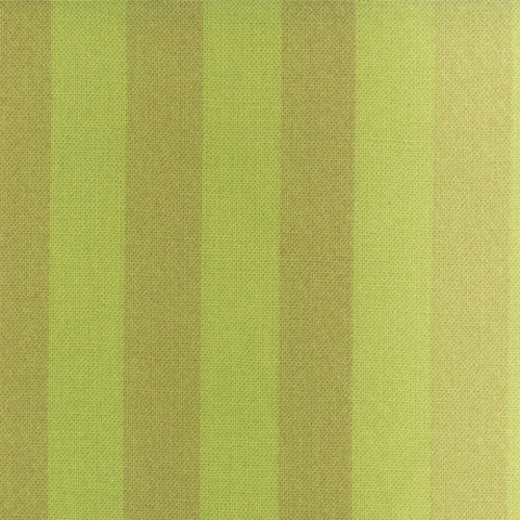 Ombre Stripe Green