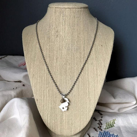 Stainless Steel Michigan with Petoskey Pendant Necklace on Ball Chain