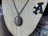 Oval Petoskey Pendant Necklace on Stainless Steel Chain