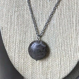 Round Petoskey Pendant Necklace on Stainless Steel Chain
