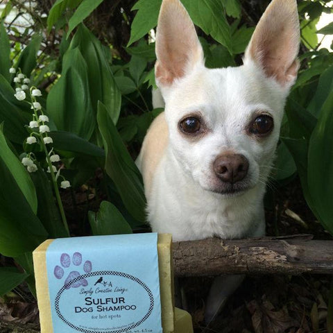 Sulfur Dog Shampoo Soap Bar