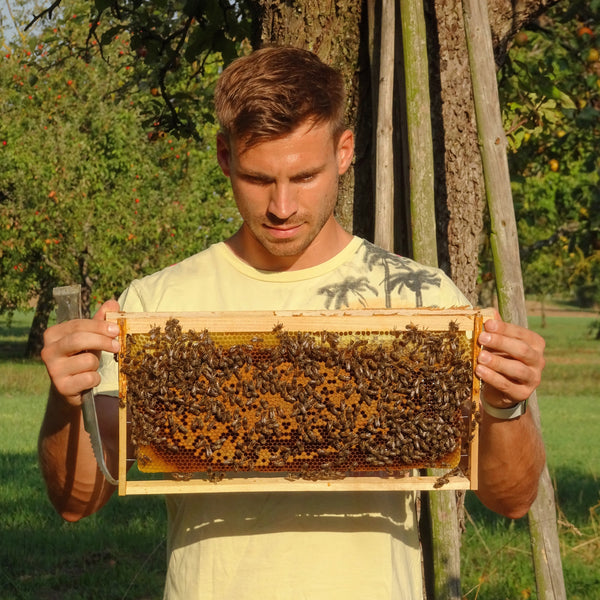 Unveiled: Hobby Beekeeping with Sebastian Katz