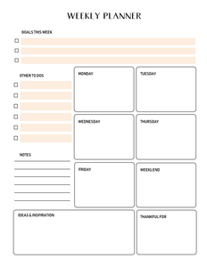 The 2019 Success Designer Planner!