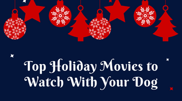 Top Holiday Movies to Watch With Your Dog