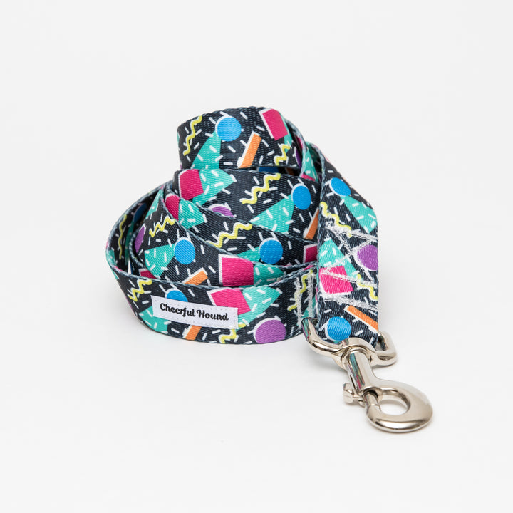 90's Vibes Dog Leash