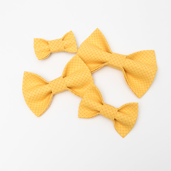 Yellow Diamond Dog Bow Tie