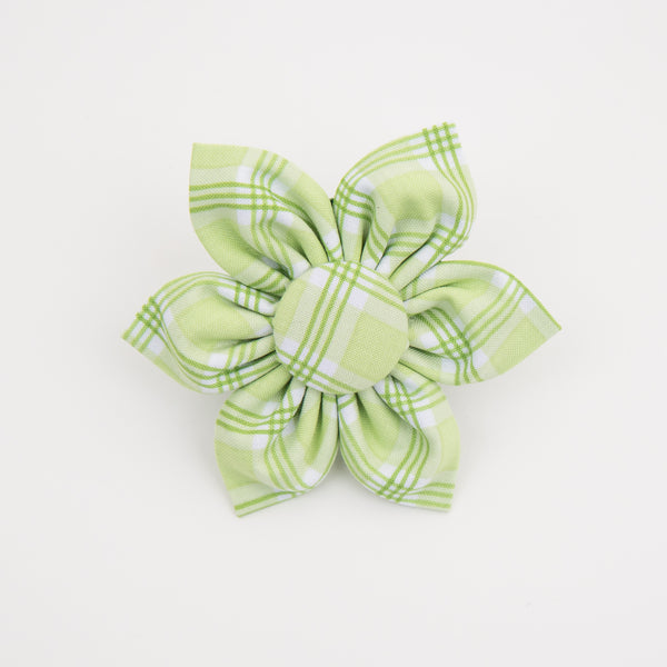 Light Green Plaid Dog Collar Flower